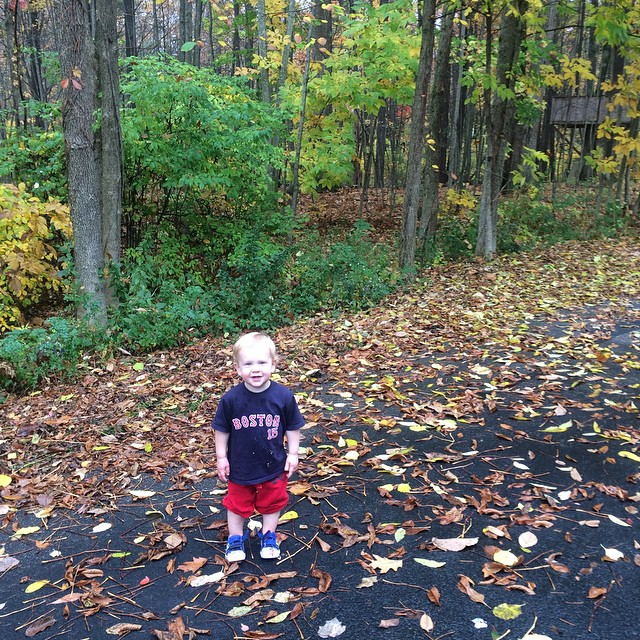 He keeps stopping and staring at the leaves falling. Amazed every time, like what is going on with this world? #fall #seeingthroughtoddlerseyes